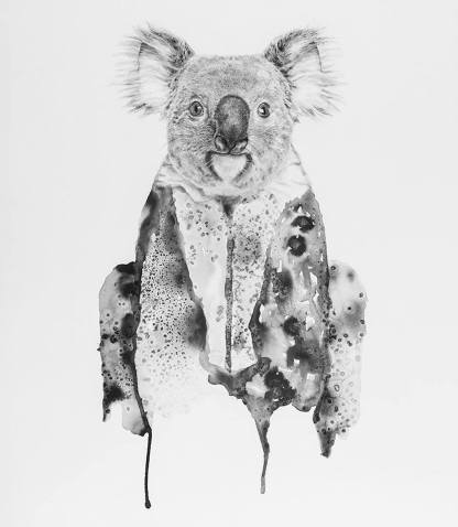 """Koala"" Pencils and ink on paper 70x50 cm"