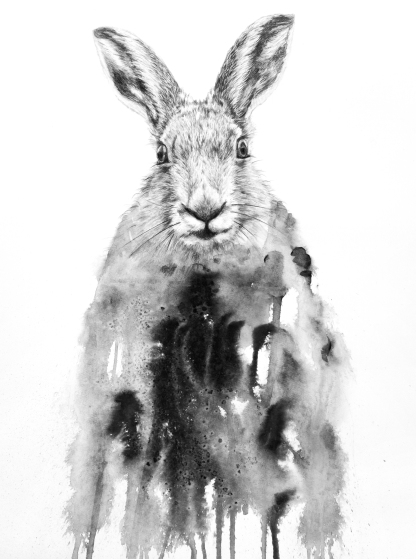 """Hare"" Pencils and ink on paper 70x50 cm"
